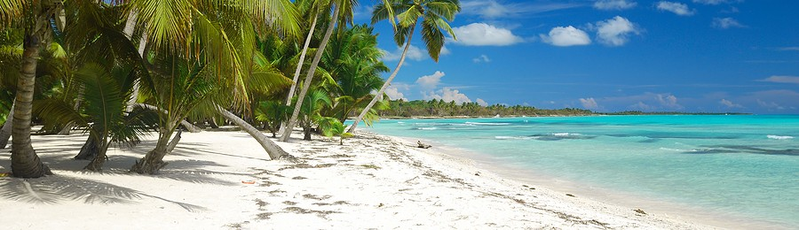 bigstock_Caribbean_Wild_Beach_5979105